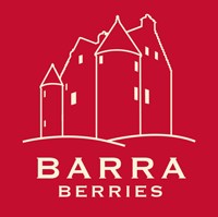 Barra Berries